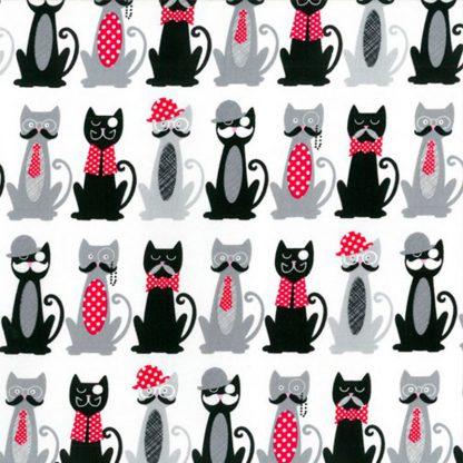 tela gatos con bigote